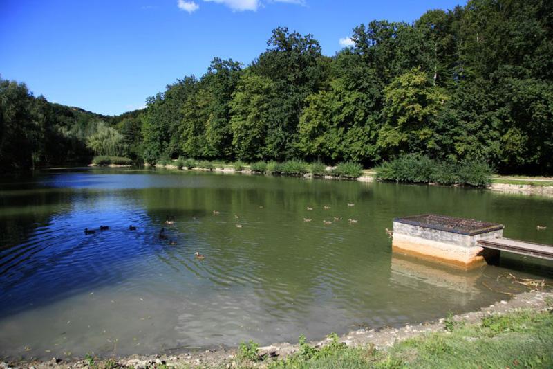 ribnik1a
